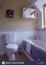 toilette und bad mit lila panel in kleinen bad mit weißen