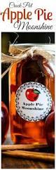 Cooked Pumpkin Pie Moonshine by Crock Pot Apple Pie Moonshine Recipe