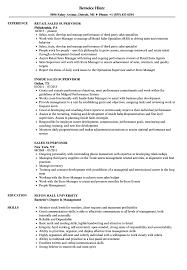 Download Sales Supervisor Resume Sample As Image File