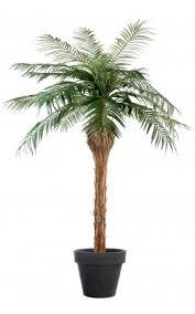 prix des palmiers exterieur palmier artificiel pour exterieur arbres et arbustes artificiels