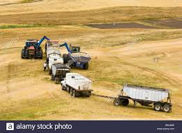Grain Carts Stock Photos & Grain Carts Stock Images - Alamy 2018 Freightliner M2 106 Grain Truck For Sale Farmscom 1980 Gmc 7000 Sold On Els Youtube Used Vehicles In Watrous Sk Maline Motor Steves And Equipment Scottsbluff Mitchell Nebraska 164 Ford Ln White With Red Dump By Top Shelf Replicas Box Agrilite Geml Inc Edmton Trailer Sales Leasing Ltd Transport Trailers Heavy Trucks Valdosta Georgia Complex Intertional 8600 Farm Grain Silage Trucks For Sale 2006 7600 For 368535 Miles Honeas Garage Taft Tn Gmc Quirky