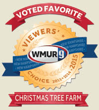 Christmas Tree Farm Near Lincoln Nh by Mountain Star Farms Mail Order Christmas Trees And Wreaths