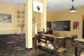 Safari Decorating Ideas For Living Room by Decorations Full Size Of Living Room Safari Themed Living Room