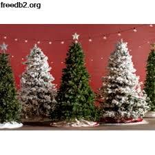 Red Velvet Tree Skirt Wayfair Christmas Trees Outdoor