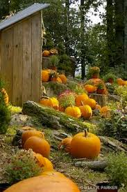 Pumpkin House Kenova Wv Times by Almost Pumpkin Carving Time Just Colours Pinterest Autumn