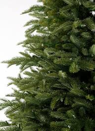 Silver Tip Christmas Tree Oregon by Cypress Spruce Artificail Christmas Tree