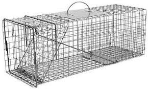 live cat trap feral or domestic cat rabbit galvanized metal live animal trap
