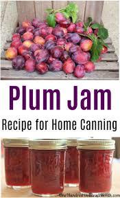 Christmas Tree Preservative Recipe Sugar by Canning 101 Cinnamon Plum Jam Low Sugar Recipe Plum Jam Low