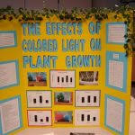 Science Fair Tri Board Support Page Dallastown Area Middle School Printable