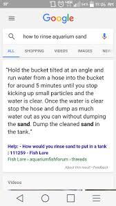 Decorator Crab Tank Mates by Best 25 Aquarium Sand Ideas Only On Pinterest Magic Sand Diy
