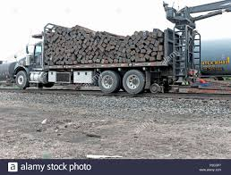 Logging Tracks Stock Photos & Logging Tracks Stock Images - Alamy Blazer Tracks Grooming Talk Custom Rubber Tracks Right Track Systems Int American Truck Prices Best Image Kusaboshicom Railway Road Magical Car Track Truck Hot Wheels Fxible Toys For Multiple Tire In Brown Mud On Country Road Stock Photo Me And My Dog Rv Train On The Way To Monster Birthday Party Invitation Party Boy Thesambacom Vanagon View Topic Next Musthave Syncro Accessory Snow In Atv Parts Trailers Accsories Ontario N Go Real Time Installation Youtube Logging Photos Images Alamy