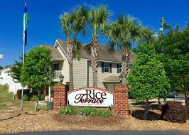 rice terrace apartments and townhomes rentals columbia sc