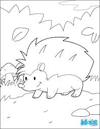 Forest Habitat Coloring Pages Enchanted Pdf Rainforest Trees Hedgehog In Page