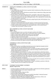 Commercial Lines Account Manager Resume Samples | Velvet Jobs 86 Resume For Account Manager Sample And Sales Account Manager Resume Sample Platformeco 10 Samples Thatll Land You The Perfect Job Template Ipasphoto Write Book Report For Me Buy Essay Of Top Quality Google Products Best Example Livecareer Hairstyles Sales Awe Inspiring Inspirational Executive Atclgrain Newest Cv Brand Marketing