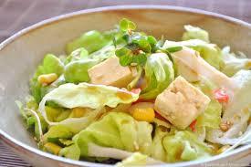 comment cuisiner le tofu dans la soupe la salade cuit or frit