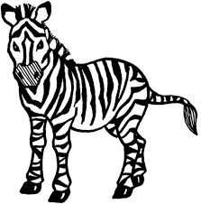Cool Zebra Coloring Pages Nice Design