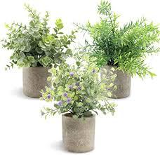 aiskki künstliche pflanzen dekoration pflanze künstliche im topf wohnzimmer pflanzen klein set mini kunstpflanzen echt pflanzen künstlich eukalyptus