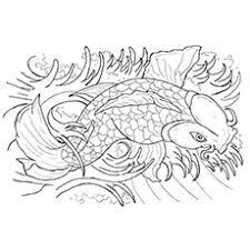 Japanese Koi Fish Tattoo Flash By Caylyngasm Part 1 Dj Neogirl