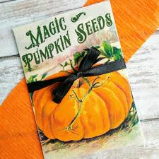 Pumpkin Seeds Terraria by 100 Halloween Pumpkin Seeds How To Use Pumpkin Seeds Food