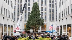 Ge 75 Ft Christmas Trees by Behold Rockefeller Center Christmas Tree Lights Up The Night