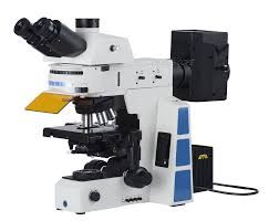Polarized Light Fluorescence Microscopy High Eyepoint Wide Field
