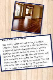 Fleas Hardwood Floors Borax by Home Remedies For Fleas On Hardwood Floors Titandish Decoration