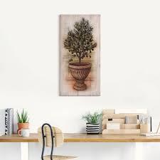 artland wandbild olivenbaum mit holzoptik pflanzen 1 st