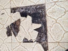 Mold Underneath Vinyl Tile Floor Asbestos