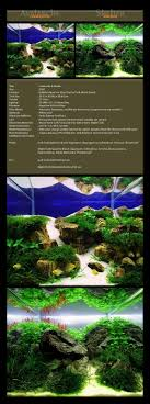 115 Best Hobbies (Aquascaping) Images On Pinterest | Aquascaping ... Photo Planted Axolotl Aquascape Tank Caudataorg New To Hobby Friend Wanted Make An For As Cheap Basic Forms Aqua Rebell Huge Tutorial Step By Spontaneity James Findley Aquascaping Videos The Green Machine Aquarium Beautify Your Home With Unique Designs Aquascape Waterfall Its Called Strenght Of A Thousand Stone Youtube September 2010 The Month Sky Cliff Aquascaping 149 Best Images On Pinterest Ideas Advice Please 3ft Forum