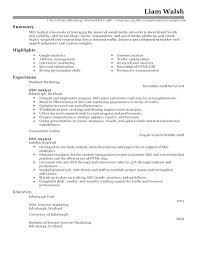 Digital Marketing Resume Sample Download Internet Samples Online Manager