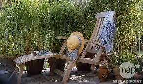 entretien des bambous en pot bambou petit jardin et terrasse conseils bambous truffaut