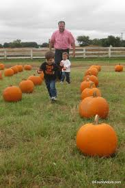 Real Pumpkin Patch Dfw by Flower Mound Pumpkin Patch Spot To Visit With Tots U2013 Four To Adore
