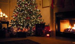 Sugar Or Aspirin For Christmas Tree by Tree Care Tips