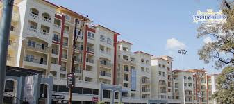 Pacific India Best Real Estate Developers & Builders