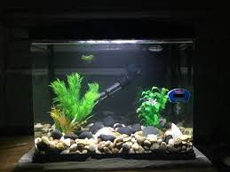 Best Substrate For Betta Tank?   268993 Httpwwwaquariuesigngroupcomdataphotos Low Tech Tank Showandtell Low Tech Can Be Lush Too The Aquascaping Styles Aquariums Planted Aquarium And Fish Tanks 101 Best Small Size Images On Pinterest Aquarium Nature Style Aquascape Awards Best Substrate For Betta 268993 Concave Convex Triangular Rectangular Aquascapes Aquascapers With Plastic Plants Only _ Ideas 106 Fluval Edge Inspiration Ohko Stone Forum Art Theories Tips Keeping Basics Love