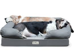 Chewproof Dog Bed by Why Petfusion Ultimate Dog Bed Will Change Your Life