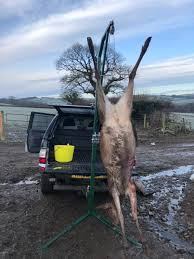 100 Deer Hoist For Truck Tow Ball The Stalking Directory