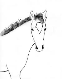 2540x3244 Draw A Horse Step By Horses Pinterest Drawings