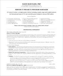 Program Manager Resume Example Construction Project Examples From Template