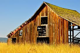 Old Barns. Long May They Live, Shelter, And Stand In Green Open ... Barn Rabbit Rescue Driving The Rusty 200 Abdoned 56 Chevy Cheap Truck Challenge Central Whidbey Island Fire Responds To At The Smith Injured Barn Owl Rescued Wildlife Friends Foundation Thailand Old Barns Long May They Live Shelter And Stand In Green Open Unboxing Paw Patrol Roll Rockys And Play Fun The Rescue Barn Adopted Dogs Rvr Horse Takes Worst Cases To Heal Renew Tbocom Paw Patrol Rocky8217s Track Set Walmartcom European Owl A Bird Rehabilitated Trained For Assortment Of 6 Small Dogs From Rescue Group Sit On Lavendar