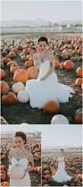 Pumpkin Patch Iowa City by Amy Cloud Photography