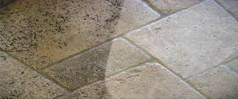 tile grout cleaning claening carpets