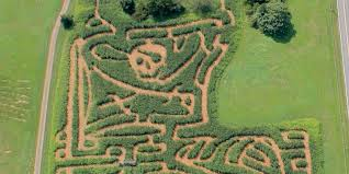 Summers Pumpkin Patch Frederick Md by At Virginia Corn Mazes Getting Lost Is Part Of The Fun
