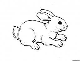 Printable Kids Coloring Pages Animal Rabbit