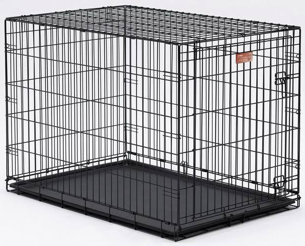 MidWest iCrate Folding Metal Dog Crate - 36in