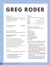 Accounting Rhblendbendcom Good Stu S Paper I For Civil Rhfreewiredcom General Resume Examples 2017 Awesome