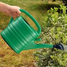 100 Indoor Watering Can Plastic Fancydream 5L Garden Essential Outdoor Light Weight S