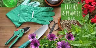 fleur et plante du lac fleurs et plantes du lac epagny horaires promo adresse