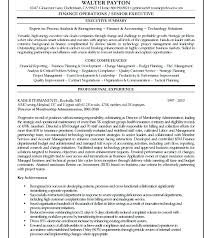 Resume Summary Examples Finance Manager Packed
