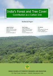 Define Carbon Sink Geography by India U0027s Forest And Tree Cover Contribution As A Carbon Sink
